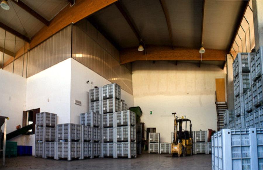 Azienda Agricola Marchese de Luca | Impianto Elettrico illuminazione TVCC e allarme