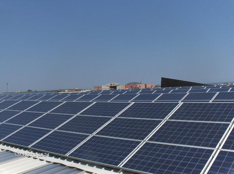 Puma Conserve | impianto fotovoltaico Puglia tetto a shed