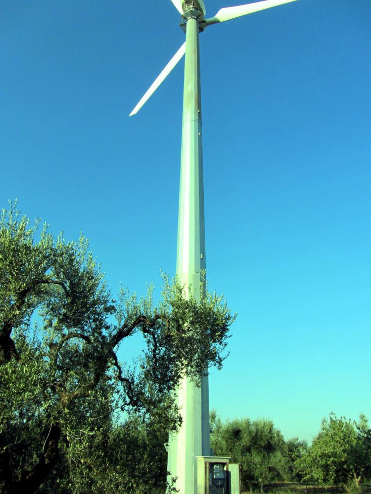 Incentivi eolico 2016 | Turbina minieolica 60 kW azienda agricola Bari, Puglia