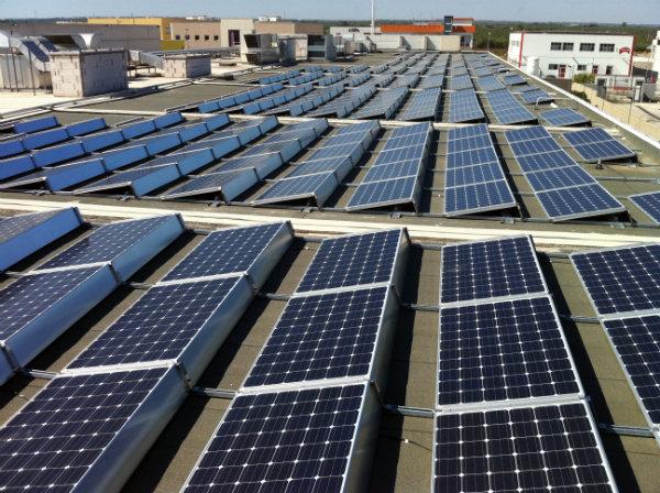 Solare fotovoltaico | tetto piano Dai Optical Molfetta Bari, Puglia