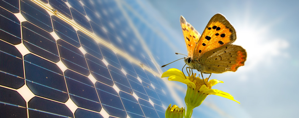 banner-fotovoltaico-02
