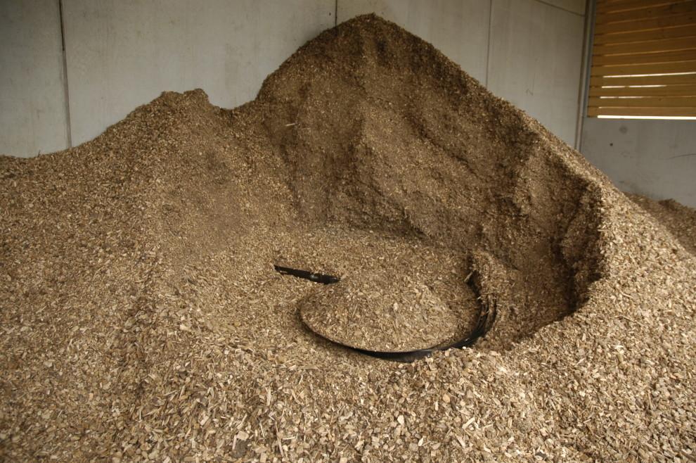 biomasse-e1447839898688