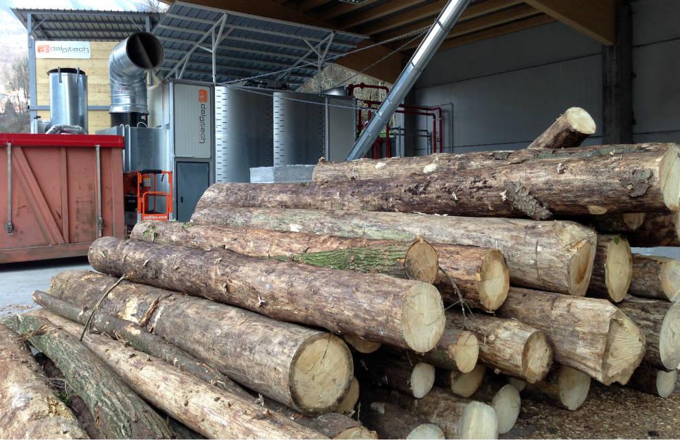 Biomassa legnosa | cogenerazione a biomasse